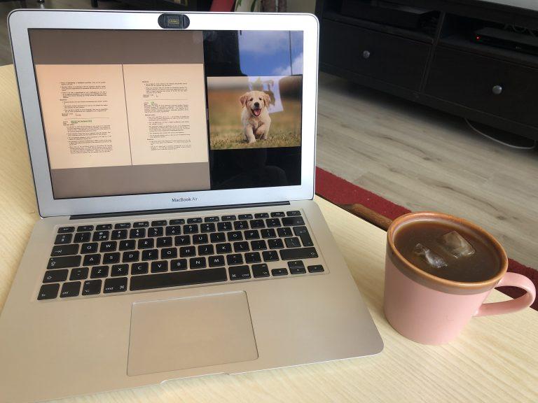 Een laptop met op het scherm een foto van een hond en tekst, daarnaast een kop koffie